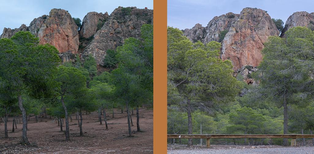 La cresta del Gallo Región de Murcia